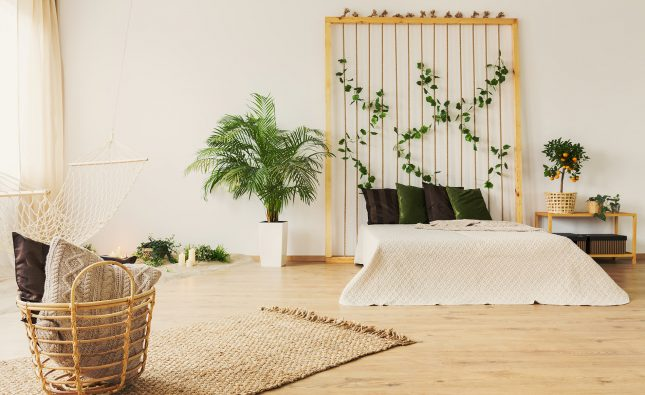 10 Painless Changes You Can Make for a Green Home