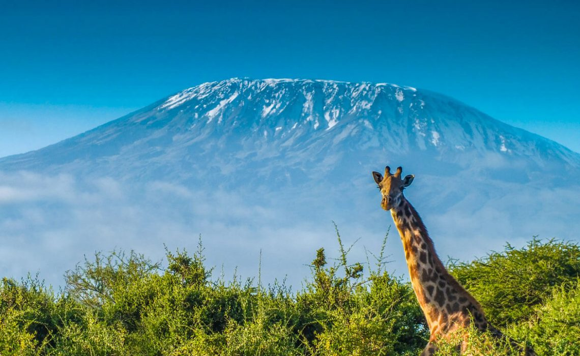 How to Climb Kilimanjaro Without the Crowds