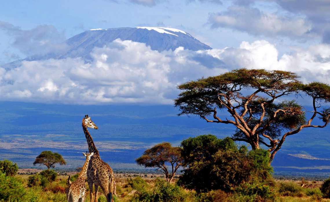Top 7 Tanzania Travel Tips for Planning Your Trip