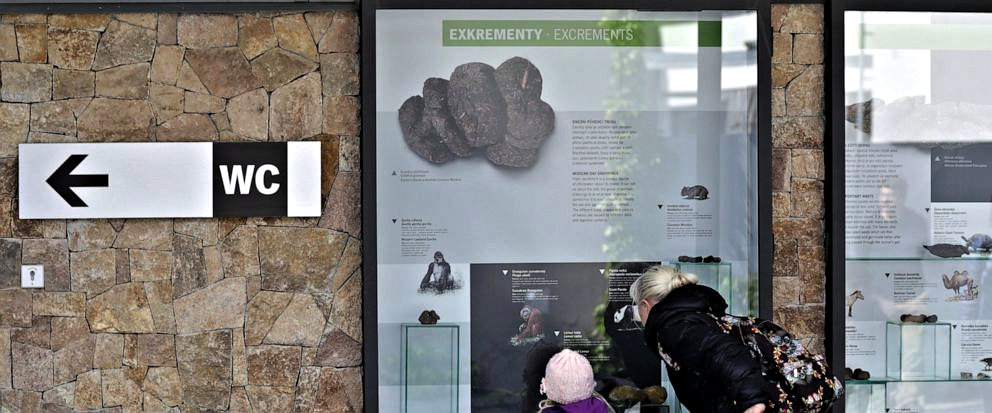 Touring Czech Republic This Week, See Poo At Prague's Zoo
