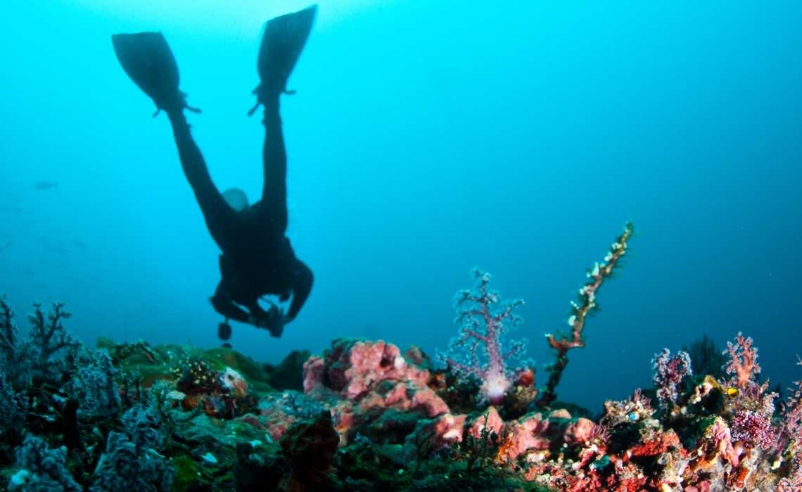 Six Scuba Diving Tips for Beginners